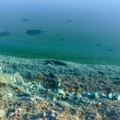 Pond infected with cyanobacteria  - UNSW Global Water Institute